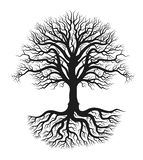 Three Full black tree with roots. Whole black tree with roots isolated white background FULL editable file included vector illustration