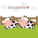 Happy Valentines Day background for greeting card. Couple of cute cows in love on green grass field. royalty free illustration