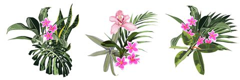 Wedding Invitation, floral invite thank you, rsvp modern card Design tropical bouquet with pink orchid stock illustration