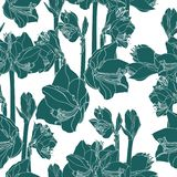 Hand drawn sketch illustration of lilies flowers seamless pattern. Floral vintage green background, royalty free illustration