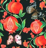 Pomegranate and Butterfly Seamless Pattern Hand drawn painted in watercolor vector illustration