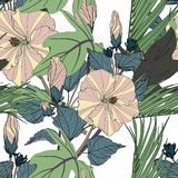 Tropical seamless pattern with green leaves and beige hibiscus flowers. stock photography