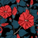 Hand drawn line sketch flowers hibiscus with leaves, Seamless pattern for fashion, fabric, and all prints stock photo