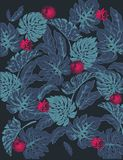 Summer Pattern Dark Blue Monstera floral stock illustration