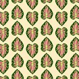 Print Abstract Leaves Pattern vector green pink yellow color royalty free illustration