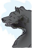Black bear. A side view of an angry bear Stock Images