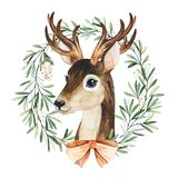 Winter composition with leaves,branches,snowberries,mistletoe and cute deer.