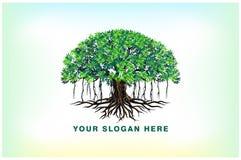 Banyan tree and roots logo