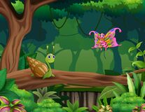 A snail and butterfly in the forest