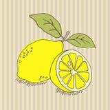 Print. Hand drawn lemon. Vector illustration Stock Photo