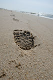 Print. Footprint on beach Royalty Free Stock Photography