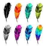 Print art concept colorful design tattoo black feather flying birds swallows silhouette. Vector illustration fly magical pen write. R writing Stock Photos