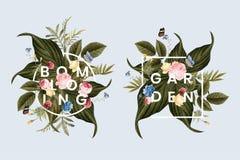 Blooming floral frame card illustration vector illustration