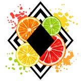 Print with citrus fruits slices. Mix of lemon lime grapefruit and orange.  royalty free illustration