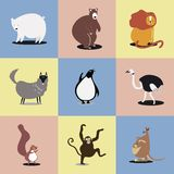 Collection of cute wild animals illustrations vector illustration