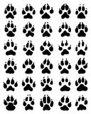 Print of dogs paws. Black print of dogs paws on white background Royalty Free Stock Photos