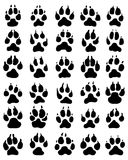 Print of dogs paws Royalty Free Stock Image