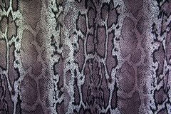 Print fabric stripes snake for background Royalty Free Stock Images