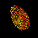 Print finger fingerprint vector crime identity thumb thumbprint unique security Royalty Free Stock Photos