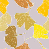 Print ginkgo Stock Photography