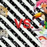 Print pattern panther vs tropical birds wallpaper. Print a funny image of a battle of tropical birds vs leopards. Vector Wallpaper beach on a striped black and Stock Photos