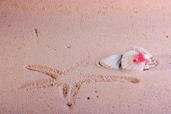 Print of starfish Stock Photo