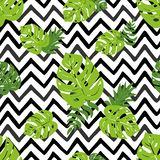 Print summer exotic jungle plant tropical palm leaves. Summer beach seamless pattern. Print summer exotic jungle plant tropical palm leaves. Pattern, seamless stock illustration