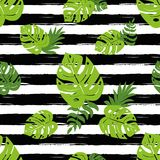 Print summer exotic jungle plant tropical palm leaves. Summer beach seamless pattern Black lines. Print summer exotic jungle plant tropical palm leaves. Pattern royalty free illustration