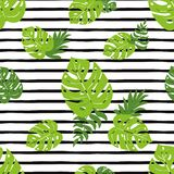 Print summer exotic jungle plant tropical palm leaves. Fresh summer beach seamless pattern Black lines. Print summer exotic jungle plant tropical palm leaves stock illustration