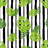 Print summer exotic jungle plant tropical palm leaves. Nature seamless pattern Black lines. Print summer exotic jungle plant tropical palm leaves. Pattern royalty free illustration