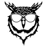 Print on t-shirt ` illustration of a head of an owl`. Illustration of a head of an owl Royalty Free Stock Photos