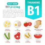 Vector poster products with vitamin B1. vector illustration