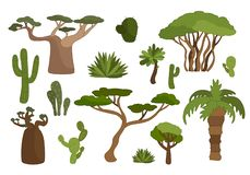 Set of plants. Vector set plants of Africa vector illustration