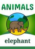 Printable animal flash card Stock Image