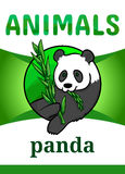 Printable animal flash card. Illustration. Suitable for teaching children new words. Giant panda bear, black and white color, eating bamboo branch. Cartoon Royalty Free Stock Photo