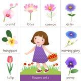 Printable błyskowa karta dla kwiatów i małej dziewczynki zrywania kwitnie royalty ilustracja