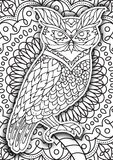 Printable coloring book page for adults Royalty Free Stock Photo