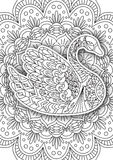 Printable coloring book page for adults Royalty Free Stock Images