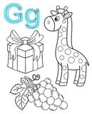 Printable coloring page for kindergarten and preschool. Card for study English. Vector coloring book alphabet. Letter G. gift,. Grapes, giraffe stock illustration