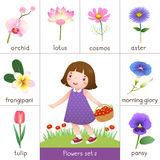 Printable flash card for flowers and little girl picking flower Stock Photo