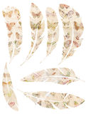 Printable Set of grungy watercolor vintage feathers with butterfly design on white background Stock Photography
