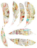 Printable Set of grungy watercolor vintage feathers on white background Stock Image