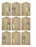 Printable Tag Sheet - Journal Cards - Romantic Floral Garden Fairy Girls stock illustration