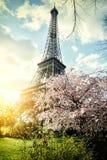 Printemps à Paris. Tour Eiffel Images libres de droits