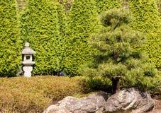 Printemps à un jardin japonais Photo stock