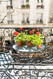 Printemps avec les géraniums rouges sur un balcon à Paris, France Images libres de droits