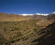 Printemps dans Ladakh Photo stock