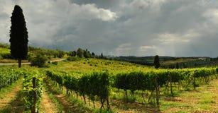 Printemps dans le chianti Beaux vignobles avec le ciel nuageux en Toscane l'Italie photo stock