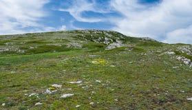 Printemps dans le massif montagneux de Chatyr-Dah images stock