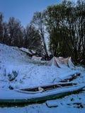 Printemps ou hiver photo libre de droits
